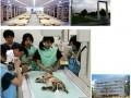 日本院校:酪农学园大学(私立)