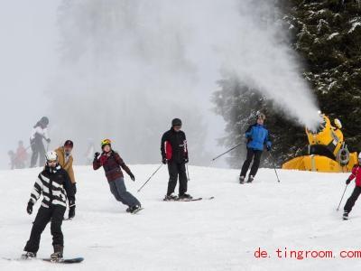 Oft f&auml;llt nicht genug Schnee zum Skifahren, dann helfen Schneekano<em></em>nen nach. Foto: Patrick Seeger/dpa