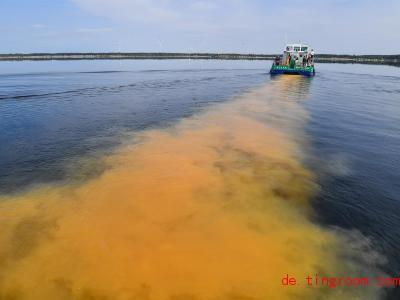Ein Schiff bringt Kalk in einenSee. Das hilft gegen die Säure im Wasser. Foto: Patrick Pleul/dpa-Zentralbild/dpa