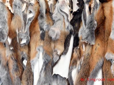 Diese Fellstücke stammen von Tieren aus unseren Wäldern. Foto: Uli Deck/dpa