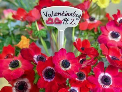 Am Valentinstag schenken sich Verliebte oft Blumen. Foto: Patrick Pleul/ZB/dpa