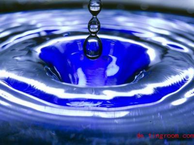 Ohne Wasser würde das Leben auf der Erde nicht funktionieren. Tiere, Pflanzen und Menschen brauchen es. Foto:Jens Büttner/ZB/dpa