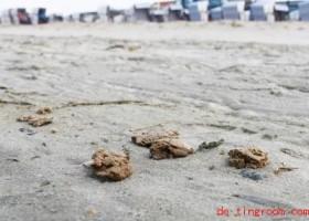 Rätselhafte Klumpen aus dem Meer