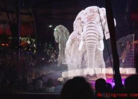 Tiere im Zirkus aus Lichtpunkten