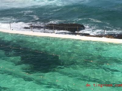 Im Becken ist Meerwasser, aber die Haie bleiben draußen. Foto: Christoph Sator/dpa