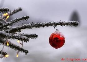 Grüne Weihnachten