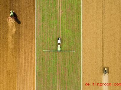 Forscher machen sich Gedanken: Wie können in Zukunft alle Menschen auf der Welt gut ernährt werden?. Foto: Julian Stratenschulte/dpa