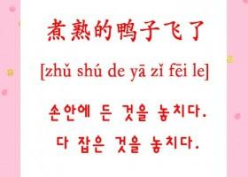 韩语惯用语翻译【煮熟的鸭子飞了】