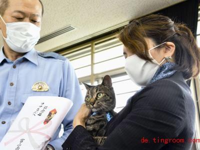 Kater Koko bekommt eine Urkunde. Foto: -/Kyodo/dpa