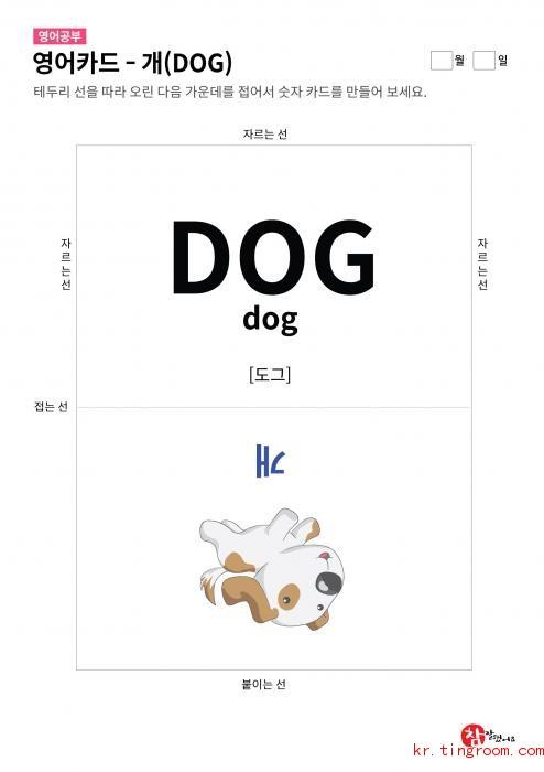 영어카드 - 개(DOG)