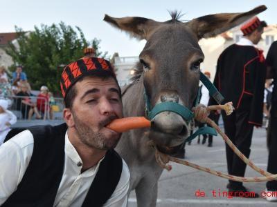 Erst schuften und dann auch noch die Möhre teilen. Ob dem Esel das wohl gefällt?. Foto: Hrvoje Jelavic/Pixsell/XinHua/dpa
