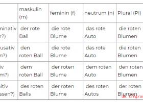 (16) Deklination der Adjektive nach bestimmten Artikeln (der, die, das)