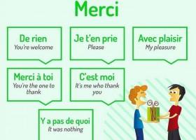 【法语表达】回答Merci