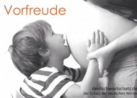 德语每日一词:Vorfreude
